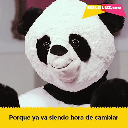 PandasBlog_500x500